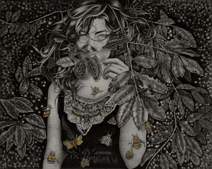 'Daphnis-Nerii'_40x50cm_graphite,watercolorink-on-wood_2012