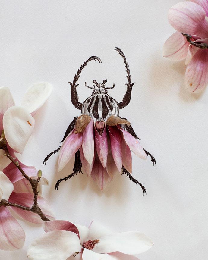 magnolia-bug-no-4337-bi-kari-herer
