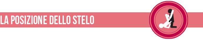 love-banner-stelo