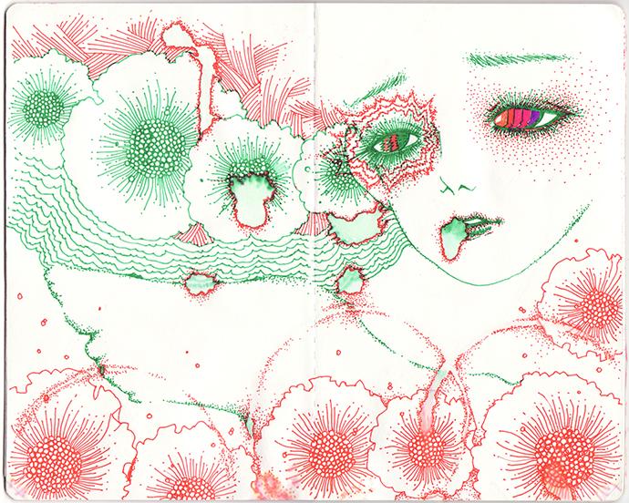 lp.sketch2