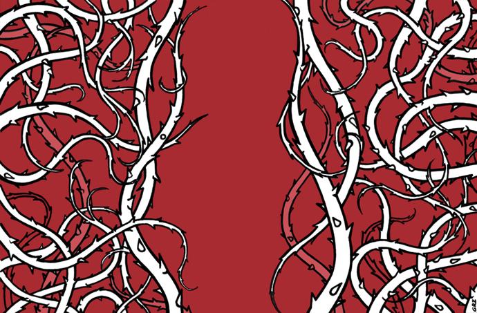 spine rosse