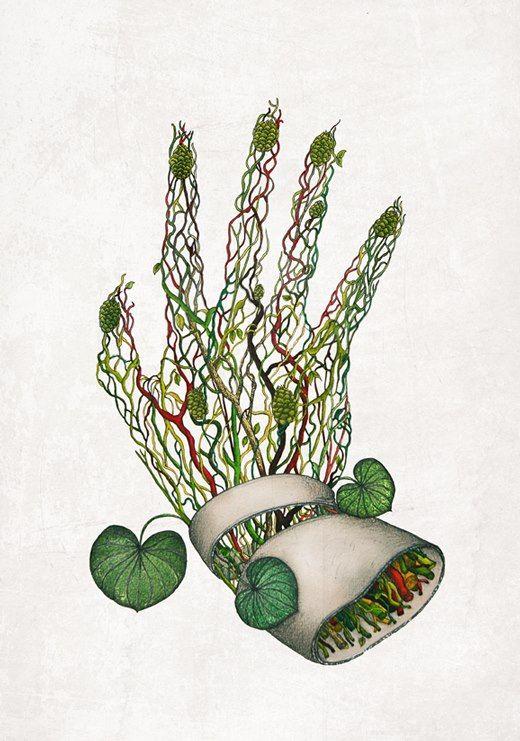 HANDS#31