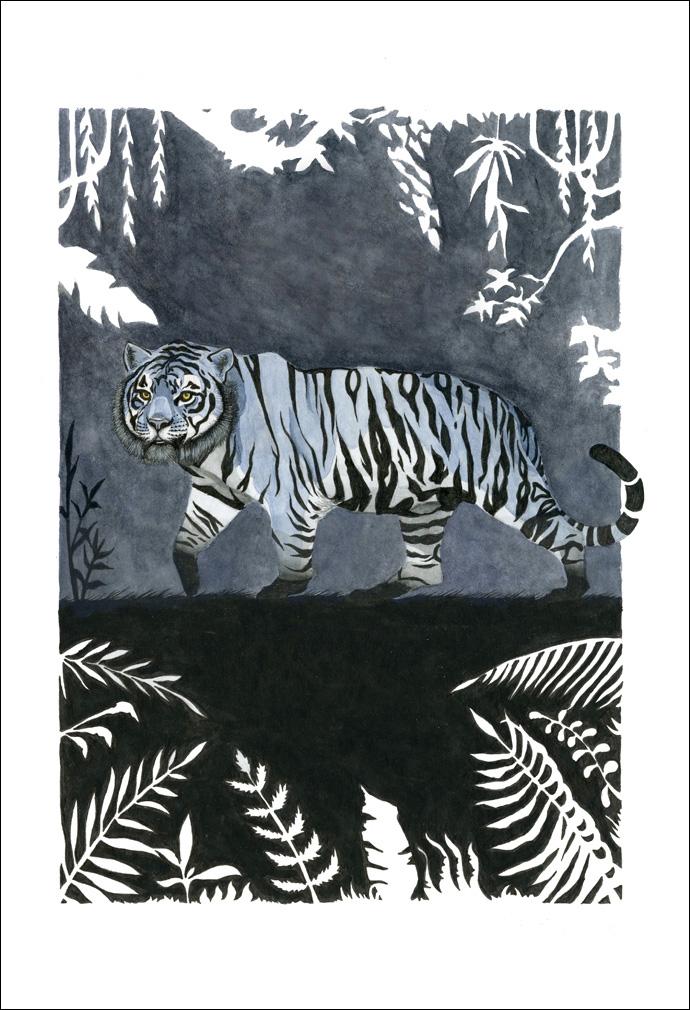 tigres-azules